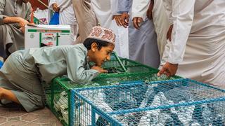 Nizwa / Oman