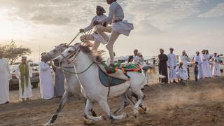 tradycyjne wyścigi konne / Oman