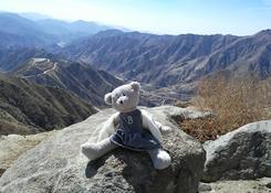 Krysia - wierny kompan mojej magicznej podróży podczas górskiego trekingu.