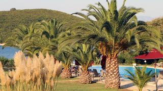 Zieleń na wyspie Corfu