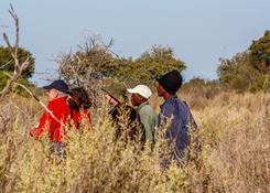 Piesze safari