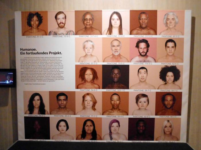 Humanae - fragment projektu