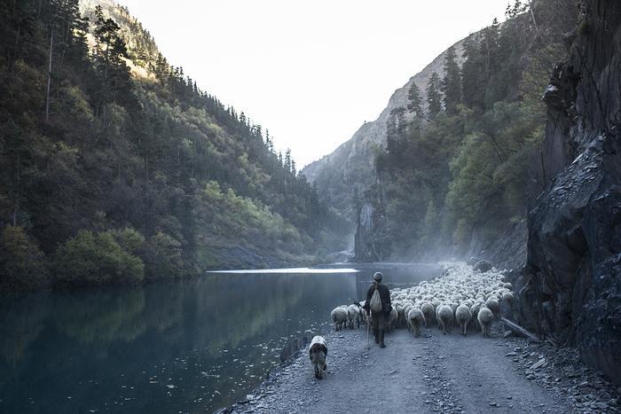 Przejście tymczasową drogą przy nowym jeziorze, powstałym po usypaniu się góry