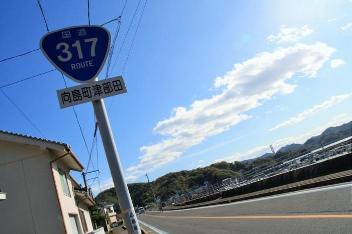 route 317