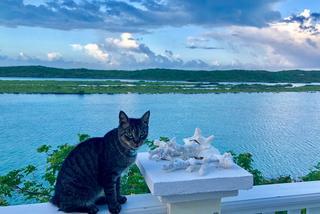 Weekend na Turks & Caicos