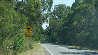 Kangurzy znak, w drodze do Grampians
