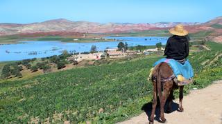 Maroko, między Meknes a Fez, marzec 2019