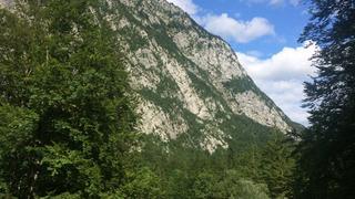 Słowenia, gdzieś na szlaku...