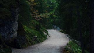 ścieżka wokół jeziora