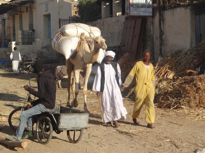 Inne równie ciekawe życie (Róg Afryki, Erytrea, Keren luty 2019)