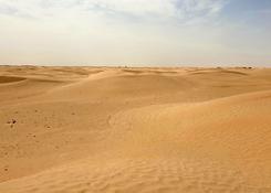 Sahara w okolicy Douz