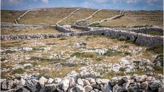 Chorwacja - bezdroża wyspy Krk