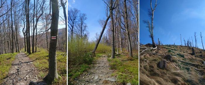 szlak z Pokrzywnej na Srebrna Kopę