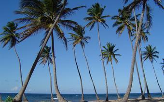 Plaża w Punta Cana