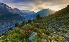 Szwajcaria, Aletschgletscher