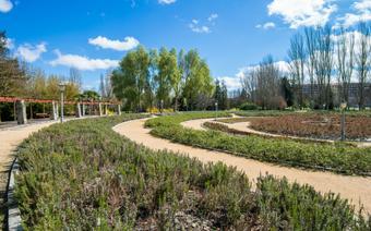 Hiszpania: Vitoria-Gasteiz