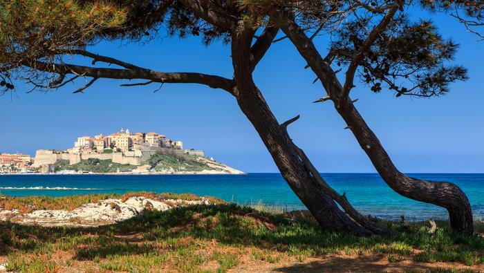 Korsyka: Calvi