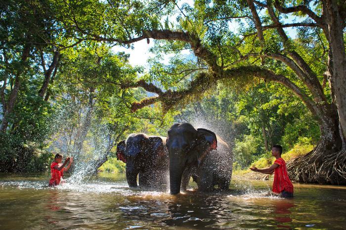 Wyprawa do Tajlandii pełna przygód! TOP 15