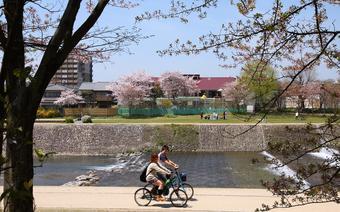 Podróżuj po Kioto komunikacją lub rowerem