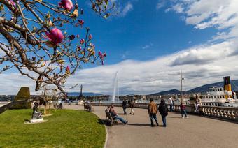 Genewa. Jezioro Genewskie