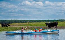 Polska na weekend: Spływ kajakowy w Biebrzańskim Parku Narodowym