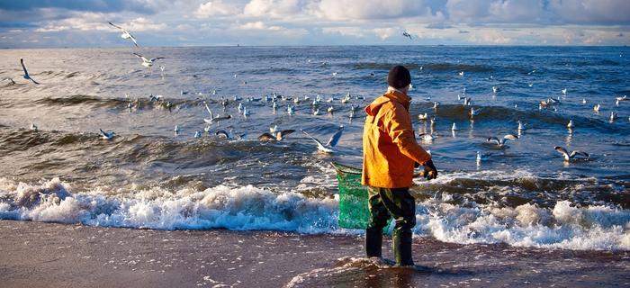 Morze Bałtyckie - poławiacz bursztynów
