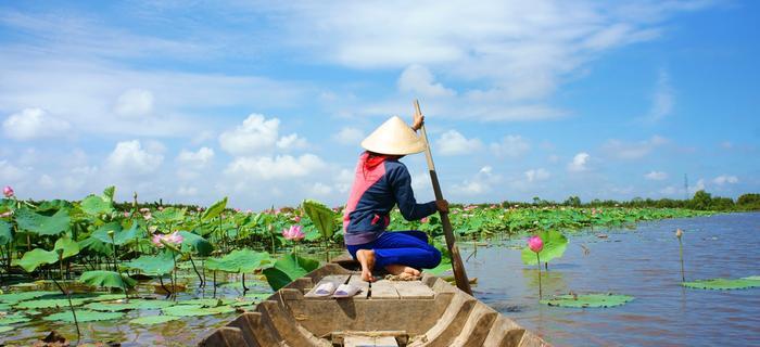 Mekong, Delta Mekongu w Wietnamie