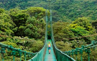 Dżungla w Monteverde