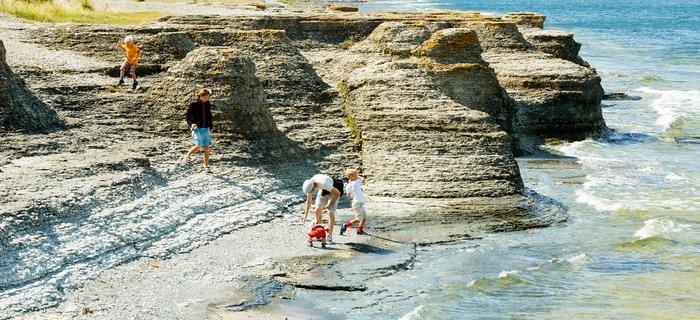 Olandia -szwedzka wyspa na Morzu Bałtyckim