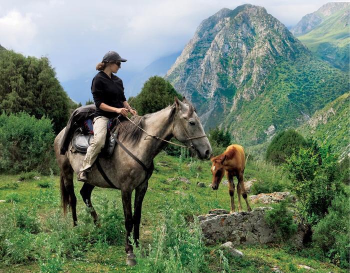 W Kirgistanie źrebięta rodzą się i nabierają sił w swoim naturalnym środowisku