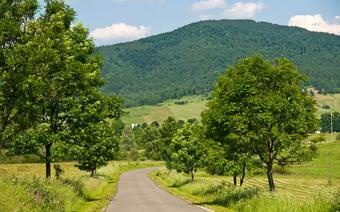 Wielka Pętla Bieszczadzka: droga niedaleko osady Bystre
