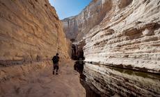 Źródło Avdat wypływa w górnym kanionie Sin