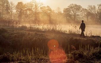 Stawy Milickie, poranny spektakl mgieł i ptasi koncert nad stawem Trześniówka