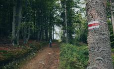 Weekend w Beskidach nie może się obyć bez wędrówki czerwonym szlakiem, który biegnie przez całe to pasmo