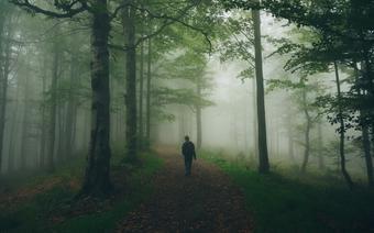Beskid Sądecki, wędrówka górskim szlakiem we mgle