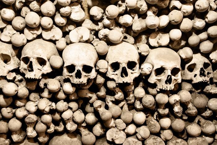 Czaszki i kości w kaplicy w Kutnej Horze, shutterstock.com