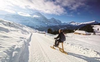 Szwajcaria, Grindelwald – zjazd na Velogemelu
