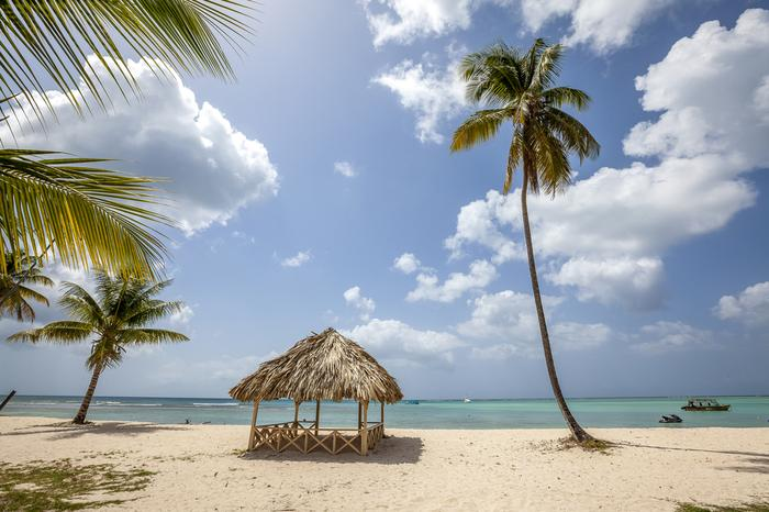 Małe Antyle, plaża Tobago Beach