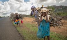 Kenia. Dzieci pomagają rodzicom od najmłodszych lat