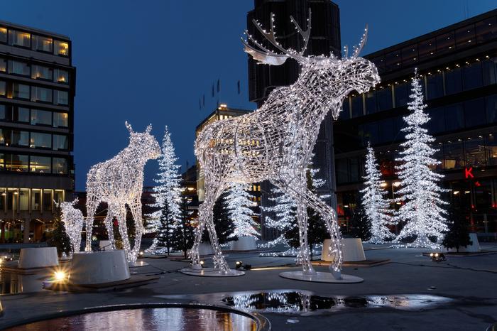Dekoracje świąteczne w Sztokholmie