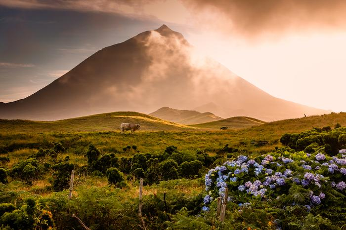 Wulkan Pico na Azorach