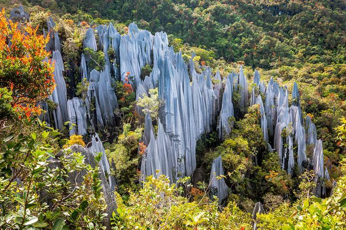 Pinnacles Borneo