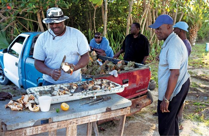 Konchy poławia się głównie na rozległych płyciznach Wielkiej Ławicy Bahamskiej