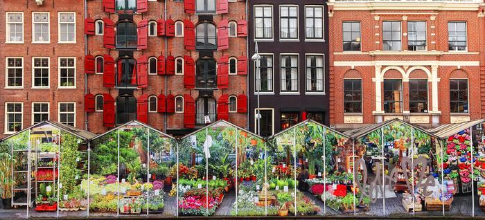 Amsterdam, kwiatowy targ nad kanałem Singel