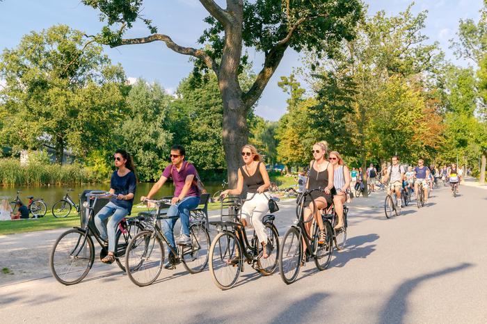 Rowery w Vondelparku w Amsterdamie