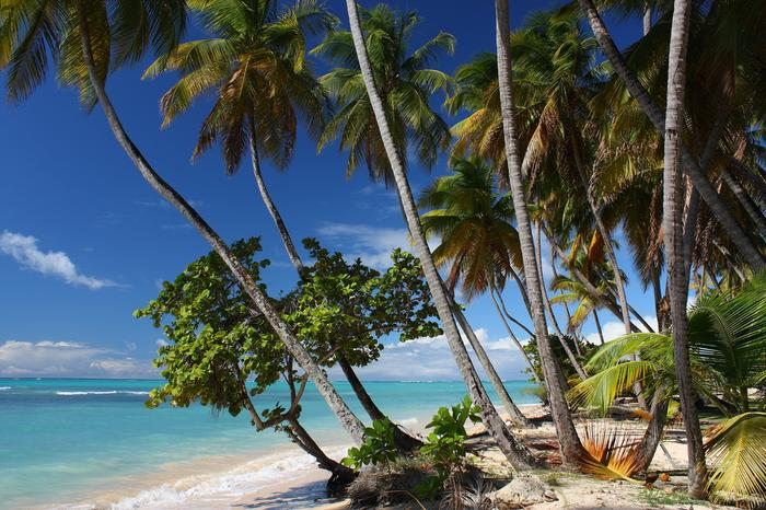 Karaiby, wyspa Tobago