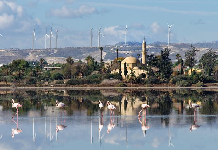 Cypr, meczet Hala Sultan Tekke