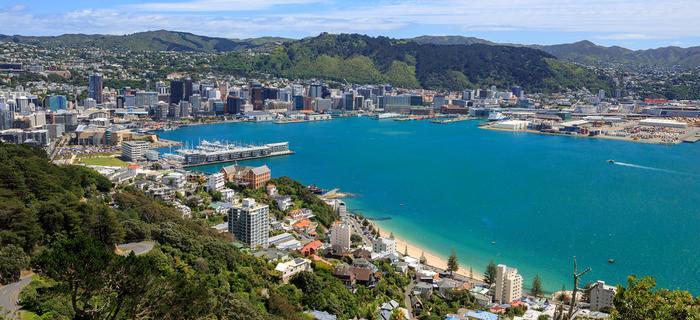 Panorama Wellington