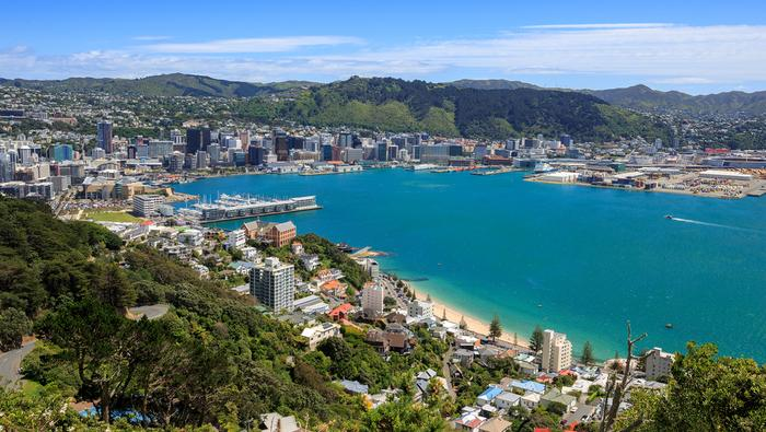 Panorama Wellington