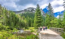 Polacy planują spędzić urlop w polskich górach